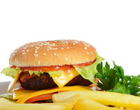 Hamburger with a potato fries Royalty Free Stock Photography