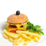 Hamburger with a potato fries Stock Image