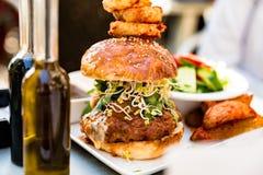 Hamburger with potatoes and fresh salad royalty free stock images