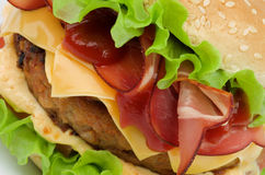 Hamburger saboroso Imagem de Stock