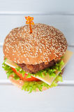 Hamburger with salad, tomato, meat on white backdrop Stock Images