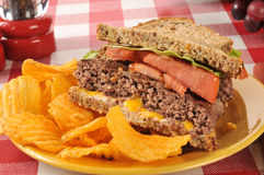 Hamburger sandwich and chips Royalty Free Stock Photography