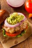 Hamburger sani casalinghi della Turchia Fotografia Stock Libera da Diritti