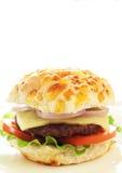 Hamburger saporito Immagini Stock Libere da Diritti