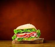 Hamburger saporito del panino Immagine Stock Libera da Diritti