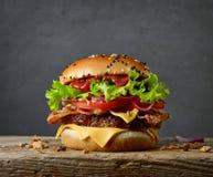 Hamburger savoureux frais photo stock