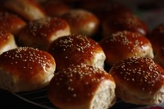 Hamburger Sesame Buns royalty free stock photos