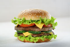 Hamburger still life Stock Images