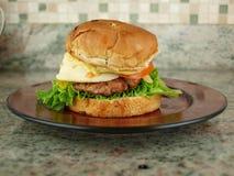 Hamburger su bun4 Immagini Stock Libere da Diritti