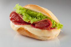 Hamburger. Tasty hamburger with tomato paste and salad on gray background Stock Image