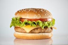 Hamburger. Tasty hamburger with tomatos and salad on light background Stock Photography