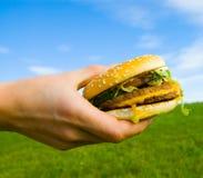 Hamburger ter beschikking Stock Foto