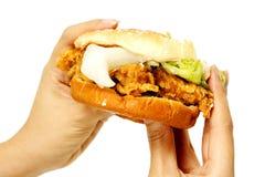 Hamburger ter beschikking Stock Afbeeldingen