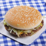 Hamburger on tissue Royalty Free Stock Images