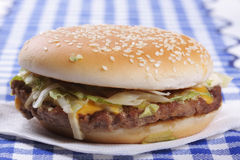Hamburger on tissue sideview Stock Photography