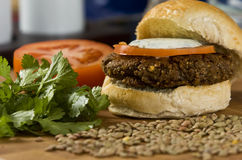Hamburger végétal image libre de droits