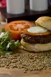 Hamburger végétal photographie stock libre de droits