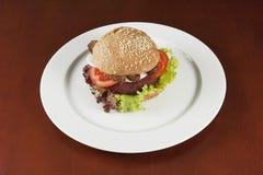 Hamburger végétarien Photographie stock
