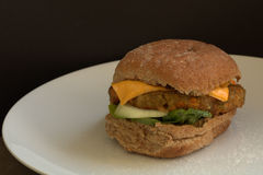 Hamburger végétarien images stock