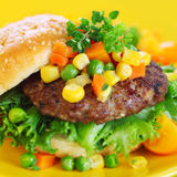 Hamburger with vegetables Stock Image