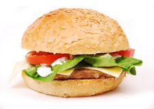Hamburger with vegetables Stock Photography
