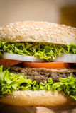 Hamburger with vegetables Royalty Free Stock Images