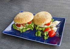 Hamburger vegetariani Immagini Stock Libere da Diritti