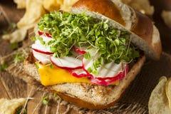 Hamburger vegetariano casalingo del tofu della soia fotografia stock