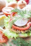 Hamburger, verdure ed erbe casalinghi Fotografia Stock Libera da Diritti