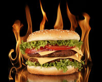 Hamburger in vlammen Royalty-vrije Stock Afbeelding