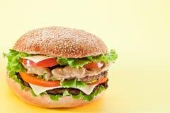 Hamburger. Royalty Free Stock Image