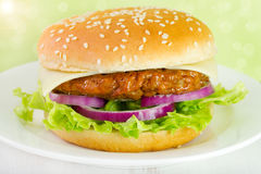 Hamburger on the plate Stock Photos