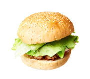 Hamburger on white Royalty Free Stock Image