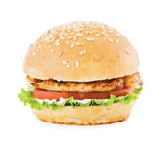 Hamburger With Meat Royalty Free Stock Photos