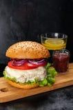 Hamburger z kurczaka cutlet, pomidorowym kumberlandem i mozzarellą, fotografia stock
