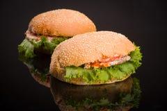 Hamburger zwei Lizenzfreie Stockfotos
