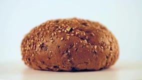 Hamburgerbroodje met zonnebloemzaden het roteren stock footage