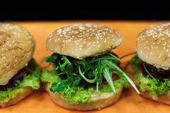 Hamburgers de Vegan Photo libre de droits