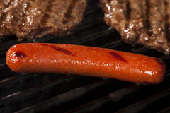 Hamburgers and Hot Dogs on the Grill Stock Images