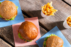 Hamburgers on napkins with fries. Stock Photography