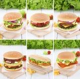 Hamburgeru inkasowego ustalonego cheeseburger wołowiny pomidorów świeży lettuc Obrazy Stock