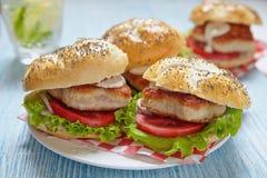hamburgeru kurczaka fastfood gorący smakowity Zdjęcie Royalty Free