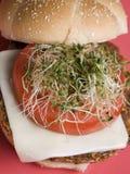 hamburgeru tofu zdjęcie stock