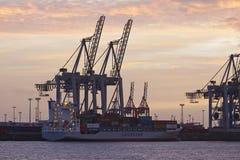 Hamburgo - porto no por do sol com os guindastes de pórtico do recipiente Foto de Stock