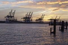 Hamburgo - puerto en la puesta del sol con las grúas de pórtico del envase Foto de archivo