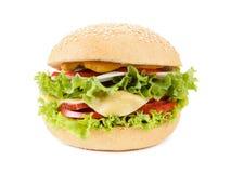 Hamburguer com carne e vegetais Imagem de Stock Royalty Free