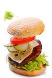 Hamburguer delicioso com os ingredientes de queda do voo em um fundo branco Imagem de Stock