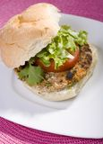 Hamburguer do grão-de-bico do Vegan Foto de Stock Royalty Free