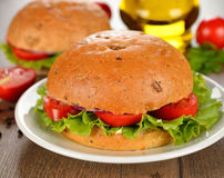 Hamburguer do vegetariano com vegetais Fotos de Stock Royalty Free