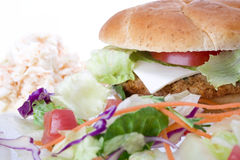 Hamburguer do Veggie Foto de Stock Royalty Free